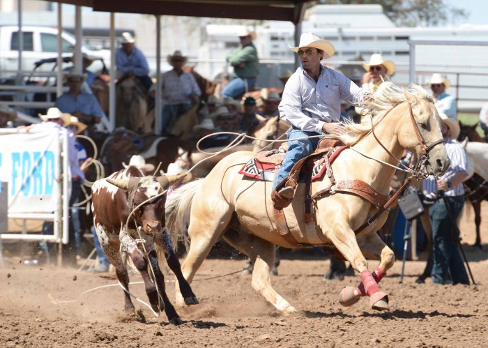 2013 SG Steer Tripping-Vin Fisher-Q