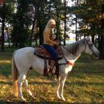 10 Year Old Finished Head/Heel Gelding
