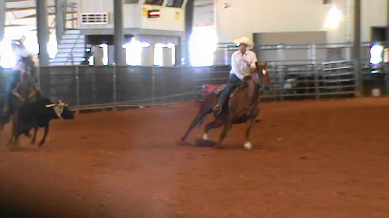 Big Head Horse VIDEO