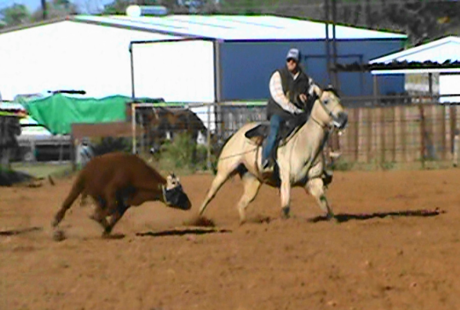 All Around Horse Roping and Barrels