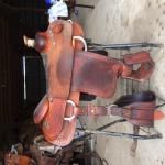 14.5 inch Martin Calf Roping Saddle